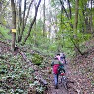 Őszi kerékpártúra a Vértesben